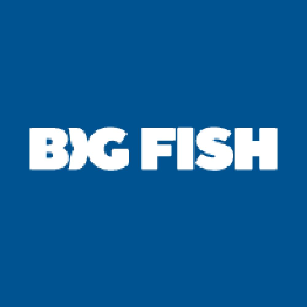big-fish-games-coupon-codes