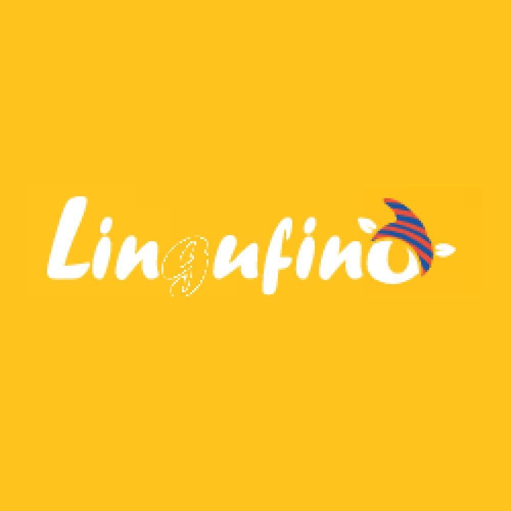 lingufino-coupon-codes